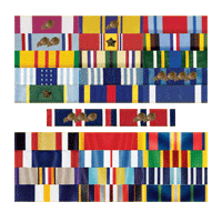 Site owner's service ribbons