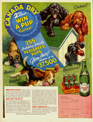 Canada Dry ''Win one of 255 Pedigree Pups'' promotion from 1948